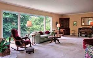 Minneapolis Green Upholstery cleaning