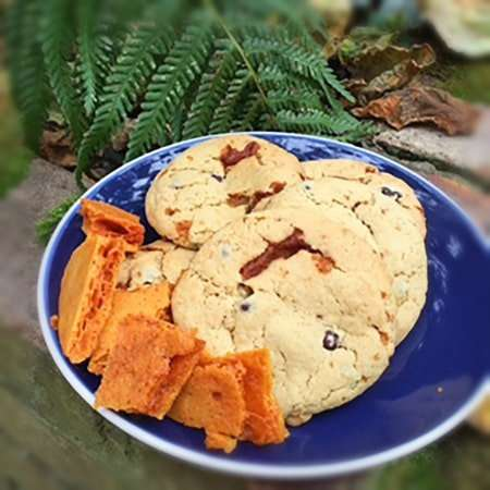 Vegan Pacari Chocolate and Honeycomb Cookies