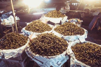 Heuschreckensnacks in Rangun