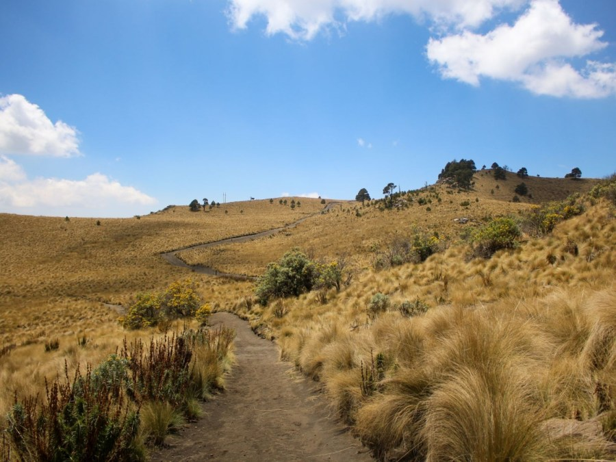 Der Weg nach La Joya