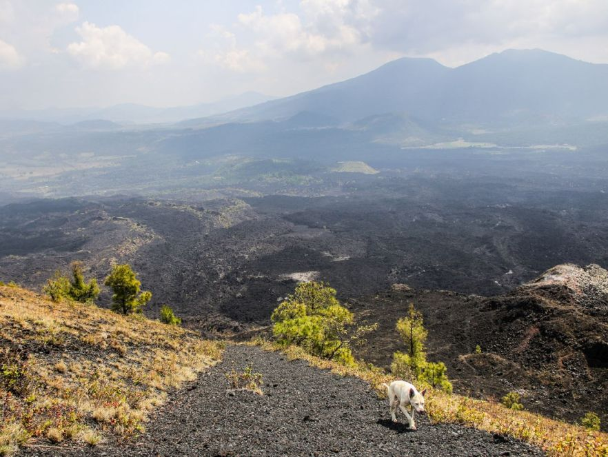 Auf dem Vulkan Paricutin