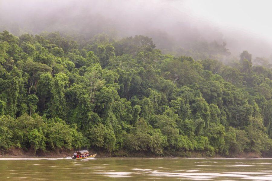 Boot auf dem Rio Usumacinta