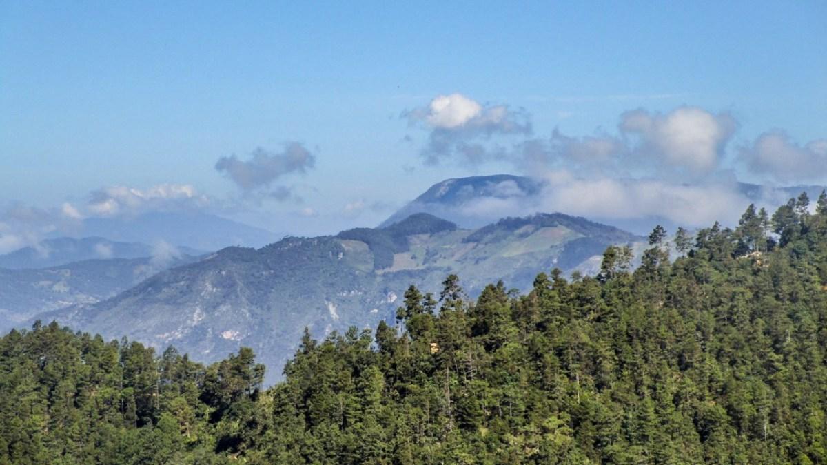 Gastbeitrag: San José del Pacifico: Mit dem Kopf in den Wolken