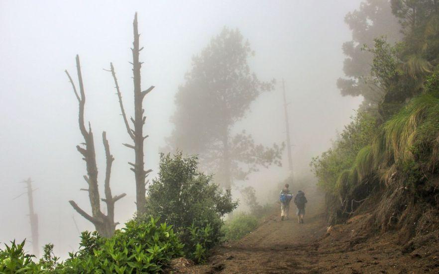 Wandern auf dem Acatenango