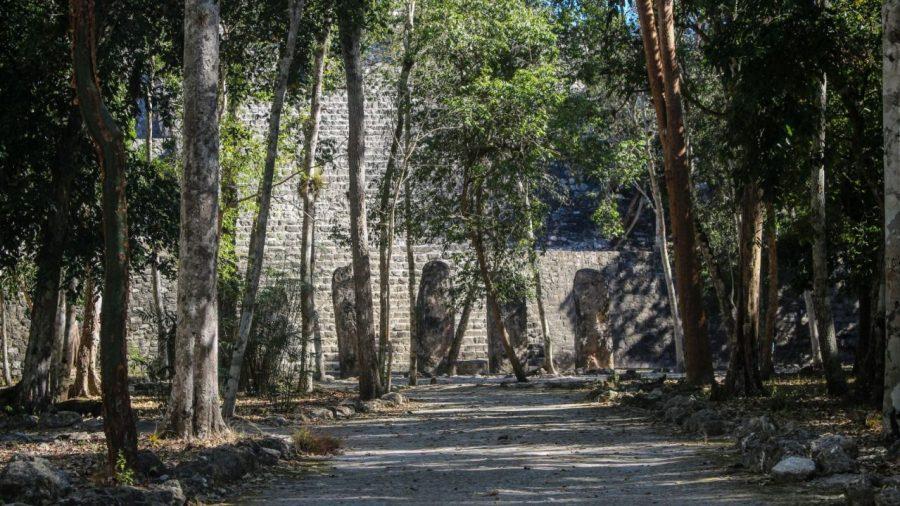 Stelen in Calakmul