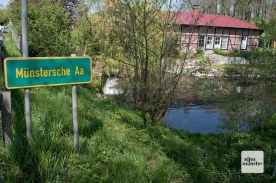 Die münstersche Aa. (Foto: Michael Bührke)