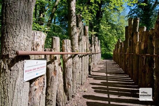 "Im Naturschutzgebiet ""Hirschpark"". (Foto: Michael Bührke)"