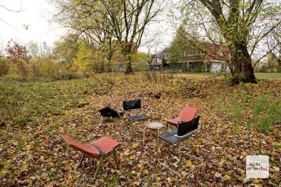 Das Gelände bietet auch verwilderte Waldbereiche. Ideal für neugierige und abenteuerlustige Kinder