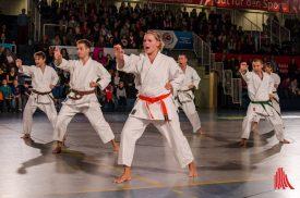 show_des_sports_2015-th-20