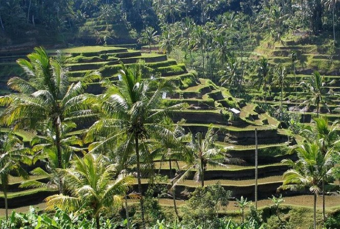 Bali 1 - TOP 10 MOST BEAUTIFUL ISLANDS IN THE WORLD