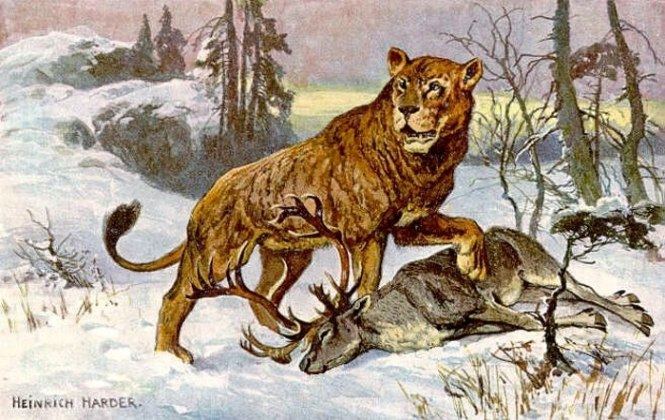 Europese holenleeuw - TOP 10 EXCTINCT ANIMALS IN HISTORY | PERISHED ANIMALS SPECIES