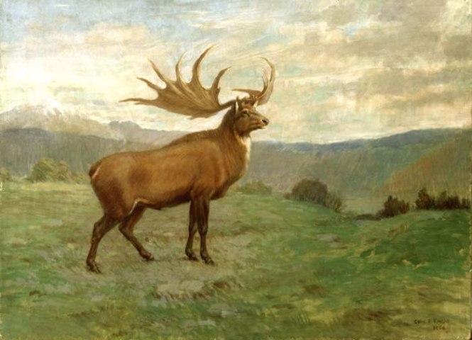 Reuzenhert - TOP 10 EXCTINCT ANIMALS IN HISTORY | PERISHED ANIMALS SPECIES