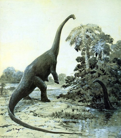 Sauropod - TOP 10 FACTS ABOUT THE LOCH NESS MONSTER