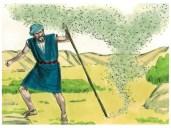 Afbeeldingsresultaat voor bijbelse plaag