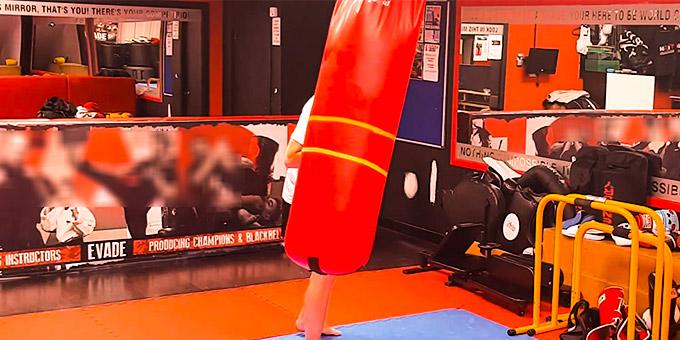 Best Standalone Punching Bag