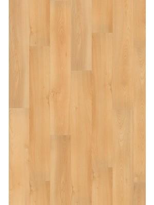 Wineo 1000 Purline Bioboden Click Summer Beech Wood Planken mit Klicksystem