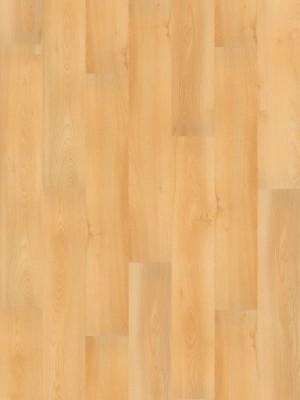 Wineo 1000 Purline PUR Bioboden Summer Beech Wood Planken zur Verklebung