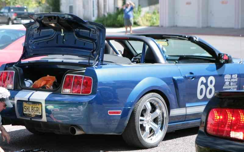 05 Cage Mustang Convertible Roll