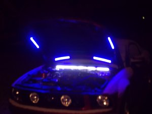 DIY Under Hood Light Wiring Harness  Ford Mustang Forum