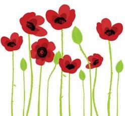 poppies (10K)
