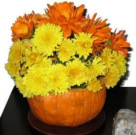 fall flowers in pumpkin
