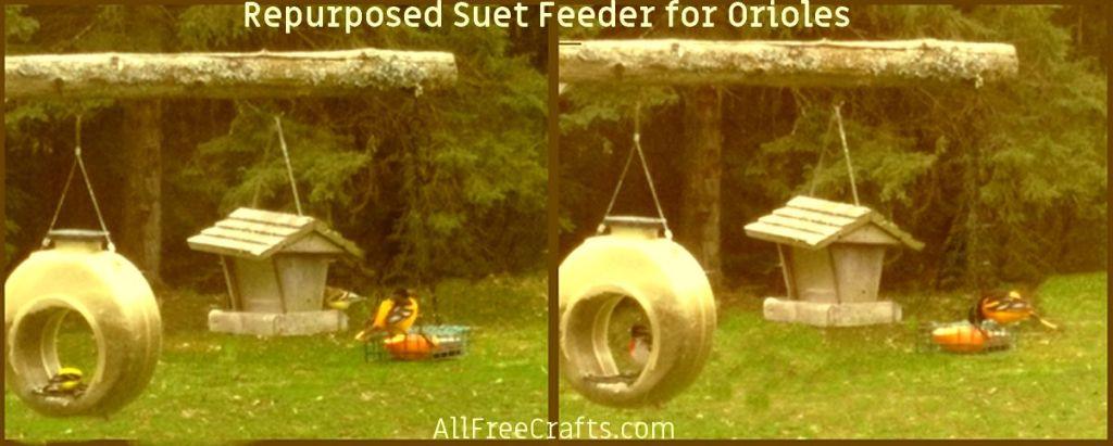 re-purposed oriole feeder