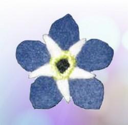 forget-me-not felt flower