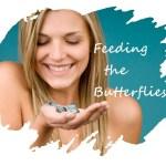 Butterfly Food