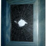 mounted and framed spider web
