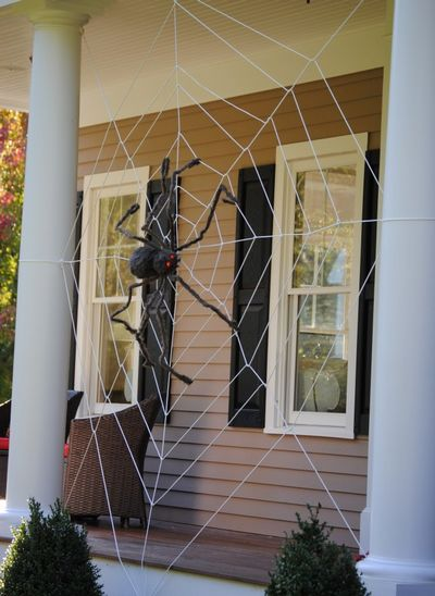 tangled clothesline web