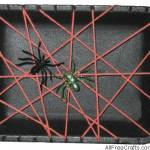 Styrofoam Tray Spider Web