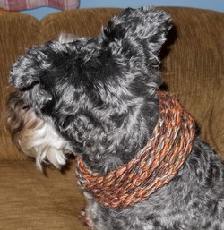 dogcowl2
