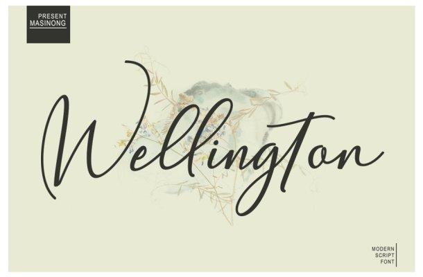 Wellington Calligraphy Font