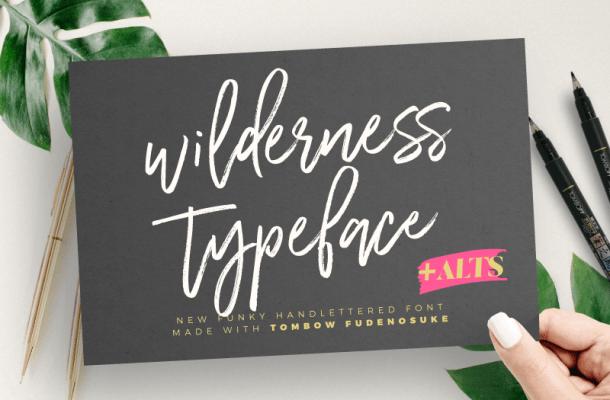 Wilderness Typeface font
