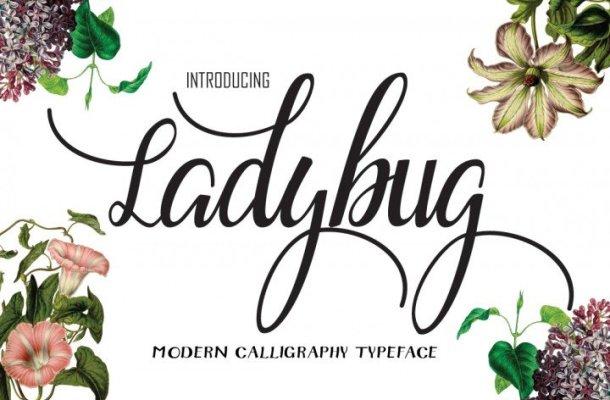Ladybug Script Font