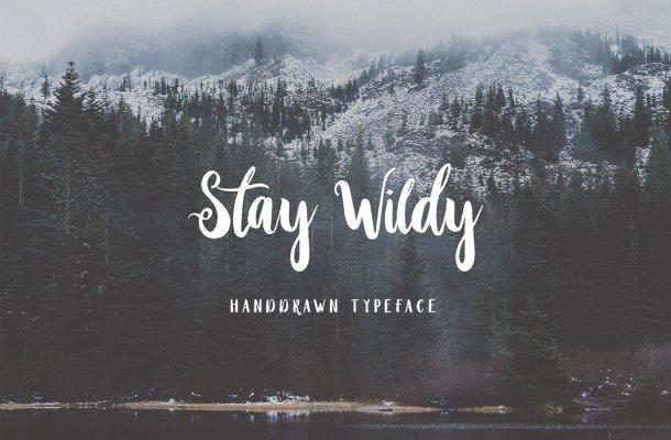 Stay Wildy Script Font
