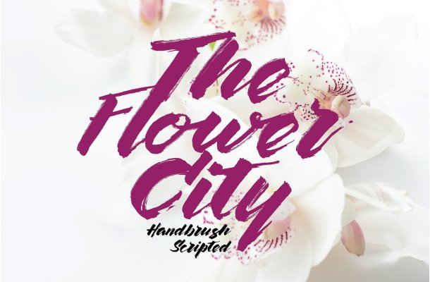 The Flower City Script Font