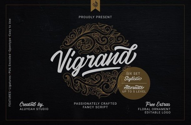 Vigrand Script Free Demo