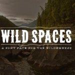 Wild Spaces Typeface