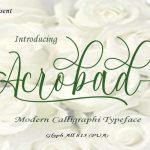 Acrobad Script Font