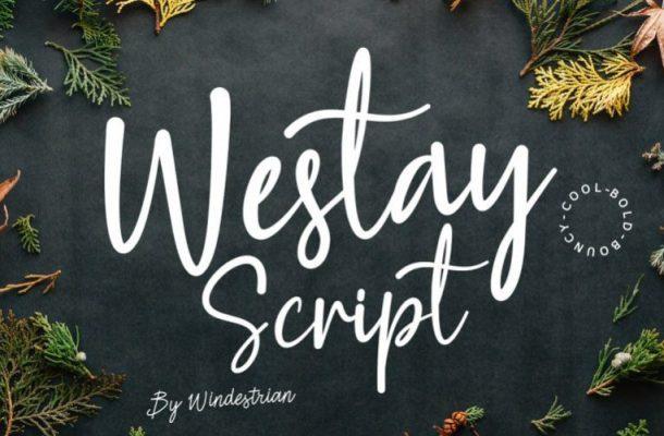Westay Bold Script Font