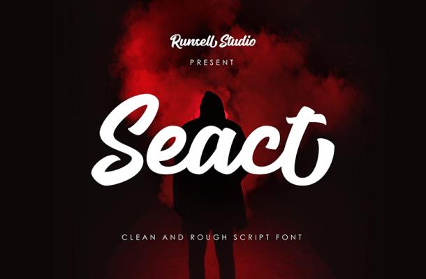 Seact Font