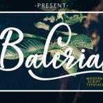 Baleria Calligraphy Font