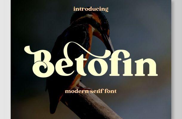 Betofin Modern Serif Font