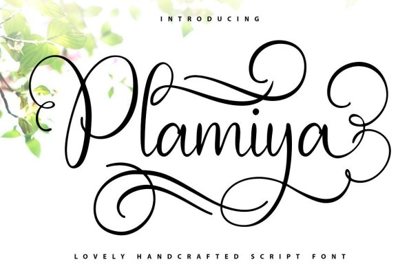 Plamiya Calligraphy Script Font