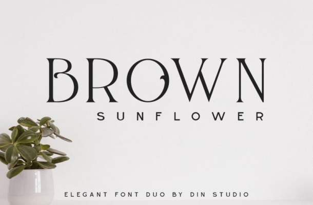Brown Sunflower Display Font