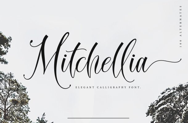 Mitchellia Script Font Free