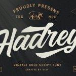 Hadrey – Vintage Script Font