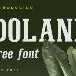 Doland Font