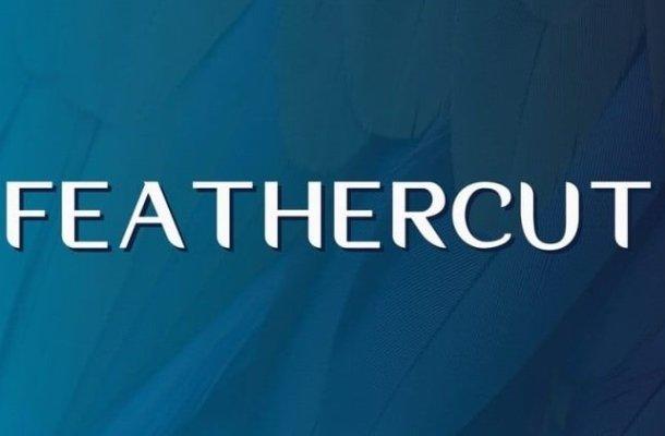 Feathercut Font